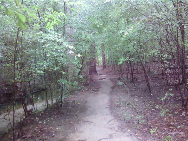 The trail!